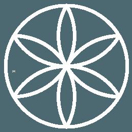 2-Spin-White